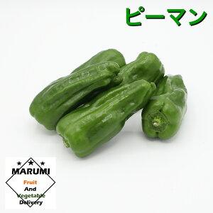 ピーマン150gパック【セット野菜と同時購入で送料無料!!】【茨城】【高知】
