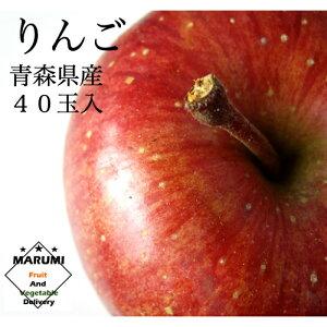 りんご40玉 10kg箱【青森】【送料無料】リンゴ 林檎 青森リンゴ サンふじ さんふじ サンフジ 果物 くだもの フルーツ 美味しい もの おいしい もの 高級 お取り寄せ