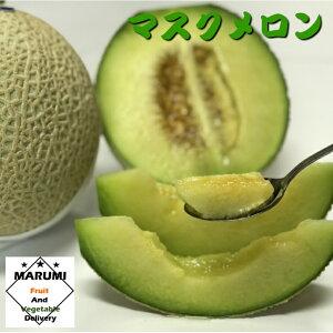 マスクメロン【セットと同時購入で送料無料!!】【静岡】 メロン 高級メロン 果物 くだもの フルーツ 美味しい もの おいしい もの お取り寄せ