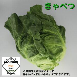 キャベツ1玉【セット野菜と同時購入で送料無料!!】