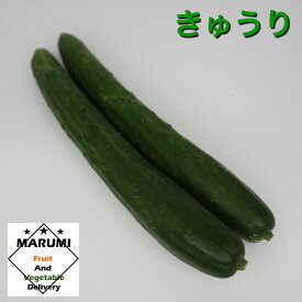 きゅうり2本パック【セット野菜と同時購入で送料無料!!】【茨城・群馬・高知】