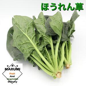 ほうれん草200gパック【セット野菜と同時購入で送料無料!!】【茨城】【千葉】【埼玉】