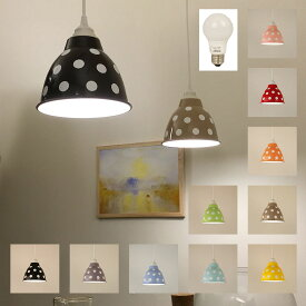 1灯スチールペンダント ポワ・ドゥ・クルール LED電球付 送料無料