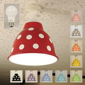 1灯 天井照明 直付タイプ スチール製 <ポワ・ドゥ・クルール>( LED電球付 ) 【 送料無料 】