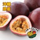 【送料無料】沖縄県産パッションフルーツ約1kg(8〜11個入り)沖縄県産のトロピカルフルーツ。南国沖縄の太陽の恵みを…