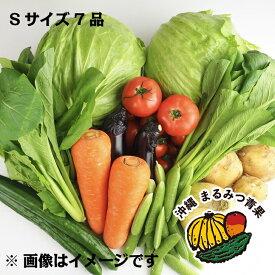 【送料無料】バイヤー厳選!!沖縄県産野菜 詰め合わせ お試しSサイズ(6品+その日のオススメ1品)