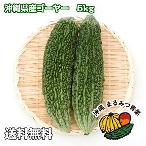 【送料無料】沖縄島野菜代表!ゴーヤー5kg 18〜22本 業務用 でお買い得!栄養満点!!ビタミンCたっぷり。チャンプルー、天ぷら、サラダ、グリーンスムージーにも!