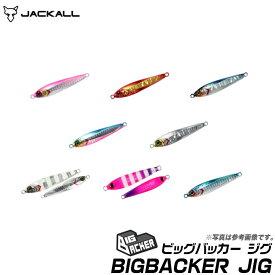 (5)【メール便配送可】ジャッカル ビッグバッカー ジグ 20g (JACKALL BIGBACKER JIG)