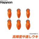 【メール便配送可】 ハピソン 高輝度中通しウキ(電気ウキ)/夜釣り/太刀魚/浮き/海釣り/hapyson /ネコポス可