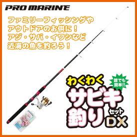 (5)プロマリン わくわくサビキ釣りセットDX 270 [270cm]