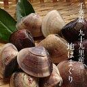 【千葉県 九十九里産 大はまぐり 1kg】はまぐり 蛤 ハマグリ お食い初め 七五三 雛祭り 祝い バーベキュー…