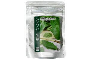 【野菜ファインパウダー】【ほうれん草】 40g【混ぜ込み素材】