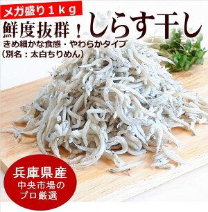 食べ方いろいろ。カルシウムたっぷり新物シラス(太白ちりめん)干し。どーんと1kg。