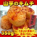 【神戸キムチ】やまいもキムチ 約350g【業務用】山芋 キムチ【02P03Dec16】
