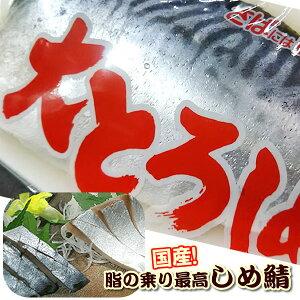 【農林水産大臣賞受賞】大トロしめさば(国産の真サバ)1枚  キズシ きずし用 しめさば 鯖寿司用 〆鯖 しめ鯖