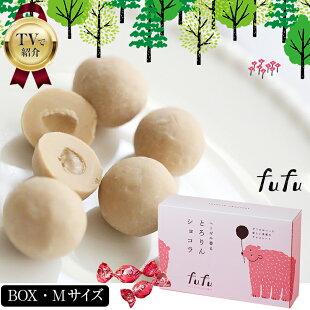 【BOXタイプMサイズ】fufuヘーゼル香るとろりんショコラ