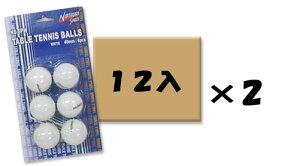 卓球ピン球ホワイト【大口用 24個】