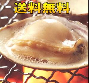 【送料無料】冷凍はまぐり 5年もの5cm〜6cmサイズ 500g×2袋入(18〜20粒入)♯貝 はまぐり ハマグリ 蛤 バーベキュー 海鮮 海鮮バーベキュー 冷凍