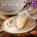 【送料無料】冷凍はまぐり5年もの5cm〜6cmサイズ 500g×6袋入(54〜60粒入)♯貝 はまぐり ハマグリ 蛤 バーベキュー…