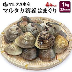 【送料無料】蓄養はまぐり 4年もの5cm〜6cmサイズ蛤(ハマグリ)1kg(25粒前後)入♯貝 はまぐり ハマグリ 蛤 バーベキュー 海鮮 海鮮バーベキュー 直送