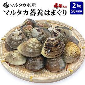 【送料無料】蓄養はまぐり 4年もの5cm〜6cmサイズ蛤(ハマグリ)2kg(50粒前後)入♯貝 はまぐり ハマグリ 蛤 バーベキュー 海鮮 海鮮バーベキュー 直送