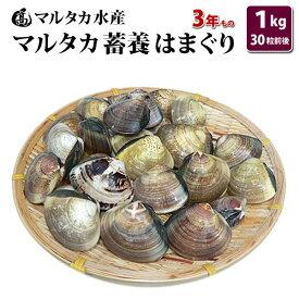 【送料無料】蓄養はまぐり 3年もの4cm〜5cmサイズ蛤(ハマグリ)1kg(30粒前後)入♯貝 はまぐり ハマグリ 蛤 バーベキュー 海鮮 海鮮バーベキュー 直送