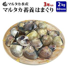 【送料無料】蓄養はまぐり 3年もの4cm〜5cmサイズ蛤(ハマグリ)2kg(60粒前後)入♯貝 はまぐり ハマグリ 蛤 バーベキュー 海鮮 海鮮バーベキュー 直送