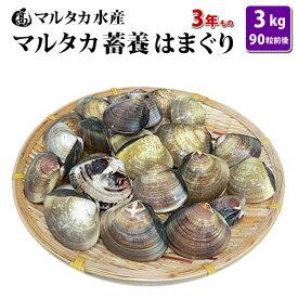 【送料無料】蓄養はまぐり 3年もの4cm〜5cmサイズ蛤(ハマグリ)3kg(90粒前後)入♯貝 はまぐり ハマグリ 蛤 バーベキュー 海鮮 海鮮バーベキュー 直送