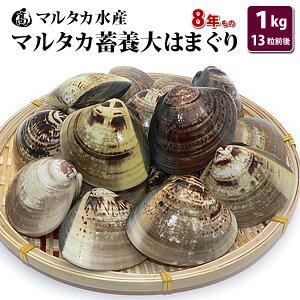【送料無料】蓄養大はまぐり 8年もの6cm〜8cmサイズ蛤(ハマグリ)1kg(13粒前後)入♯貝 はまぐり ハマグリ 蛤 バーベキュー 海鮮 海鮮バーベキュー 直送 特大