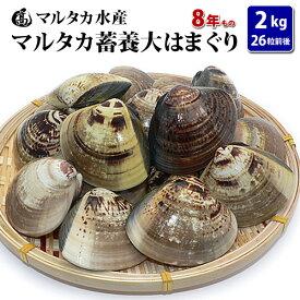 【送料無料】蓄養大はまぐり 8年もの6cm〜8cmサイズ蛤(ハマグリ)2kg(26粒前後)入♯はまぐり ハマグリ 蛤 バーベキュー 海鮮 海鮮バーベキュー 直送 特大 貝