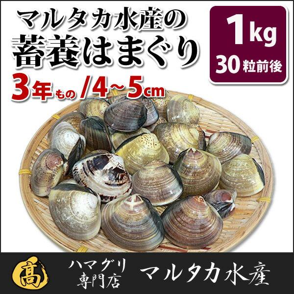 【送料無料】蓄養はまぐり 3年もの4cm〜5cmサイズ蛤(ハマグリ)1kg(30粒前後)入♯バーベキュー 海鮮焼き 海鮮バーベキュー ひな祭り 活はまぐり 直送はまぐり