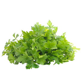 国産 フレッシュイタリアンパセリ 250g / Italian parsley, Fresh, 250g