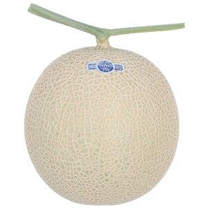 """""""<贈答用> 静岡クラウンメロン 山 等級(約1.4kg) / Shizuoka Crown Melon, ¥""""Yama¥"""" Grade, 1.4kg"""""""