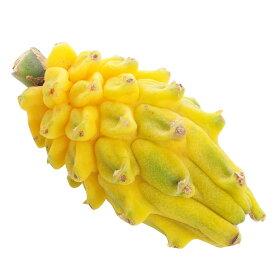 コロンビア産イエローピタヤ 3個セット / Yellow Pitaya, 3pcs