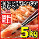 特大 ずわいがに脚 5.0kg 【あす楽対応】【送料無料】【かに カニ ズワイガニ】