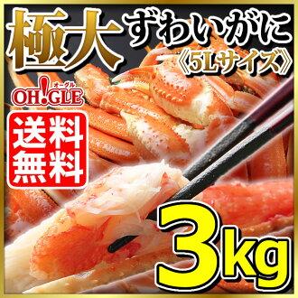 最大的雪蟹腿 3 公斤箱 (5 升)