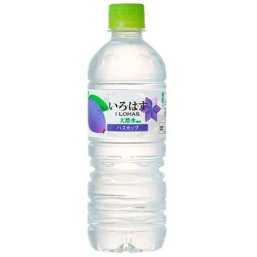 【北海道限定】いろはす ハスカップ 555ml×24 北海道の天然水 軟水使用 ジャム お菓子 アイヌ語 ハシカップ
