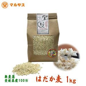 はだか麦 1kg 大麦の上質種 無農薬 愛媛県産【ゆうメール対象送料160円】もち麦と同様,水溶性食物繊維が豊富な裸麦