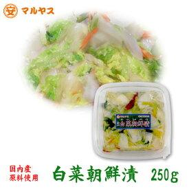 工場長推薦【白菜朝鮮漬250g】国内産原料使用