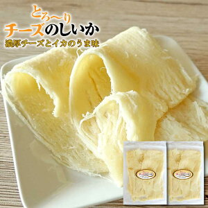 おつまみ 珍味 チーズ のしいか 110g×2袋 しっとり 函館産 濃厚チーズ とろーりチーズ