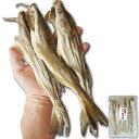 珍味 おつまみ 干し 氷下魚 こまい 約280g 大サイズのみ厳選 カンカイ 北海道産