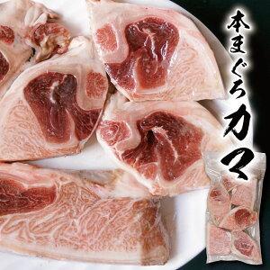 本マグロ カマ 1キロ 驚異の脂のり まぐろ カマトロ 80セット限定 鮪 塩焼き 刺身でも クロマグロ