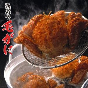カニ 北海道産 毛ガニ 約500g×3尾 ボイル済 毛がに 身入り抜群 茹で済 カニ味噌 毛蟹