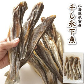 珍味 おつまみ 干し 氷下魚 こまい 約280g 中小サイズ カンカイ 北海道産