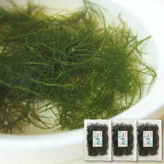 海藻まつも48g天然海草函館産松藻シャッキッとした歯触りで美味しい