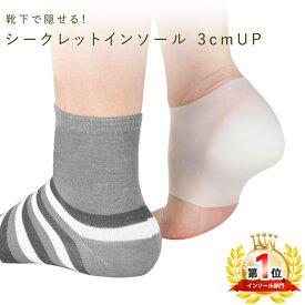 シークレットインソール 3cm 2cm アップ 靴下で隠せる シリコン製 シークレット インソール かかと レディース メンズ 衝撃吸収 男女兼用 足長効果 ばれない 形状フィット 中敷き 疲労軽減 身長 土踏まず 送料無料