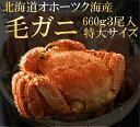 毛ガニ 毛がに 毛蟹 北海道産 浜茹で毛ガニ 1杯約660g 3杯入 特大サイズ 最上級品 堅ガニ ギフト