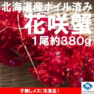 北海道産 花咲ガニ 1尾約380g メス子無し 身入り良好