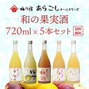 【梅乃宿酒造】和の果実酒 あらごしオールスターズ 720ml×5本