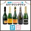 酒宝庫MASHIMO納得!HAPPY泡・スパークリングワイン5本セット【送料無料】